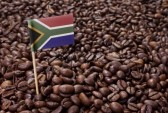 Choosing the right coffee beans in South Africa